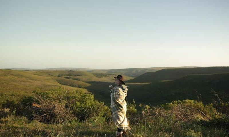 What's It Really Like to Go on an African Safari?