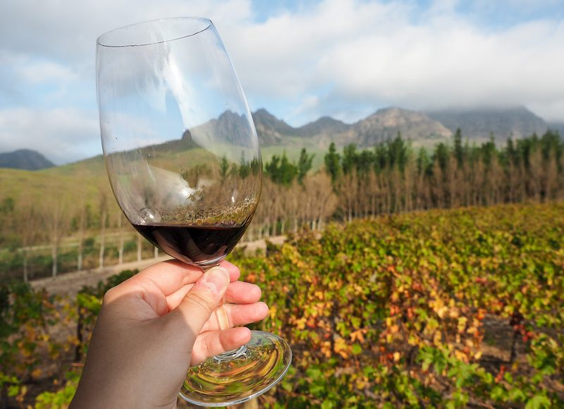 HOW TO SEE THE BEST OF SOUTH AFRICA IN 12 DAYS (part 2)